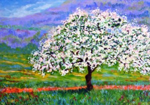 Primavera Siciliana di Mario Sampieri