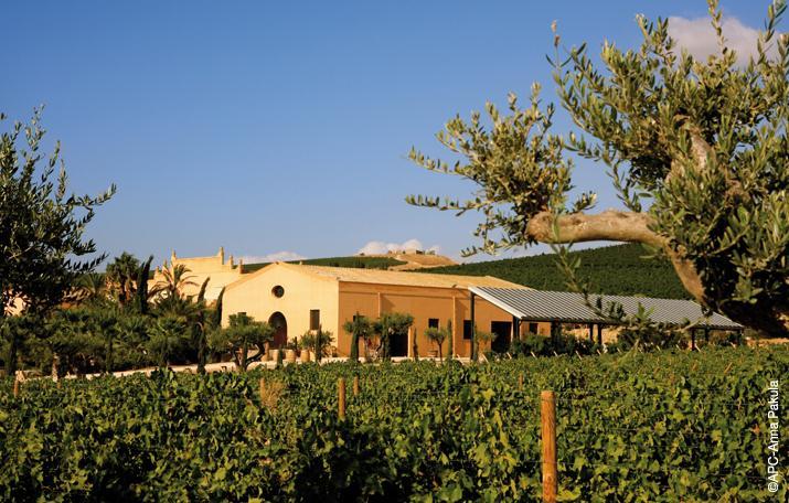 The Contessa Entellina Estate