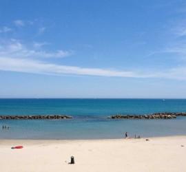 spiaggia_foggia_2
